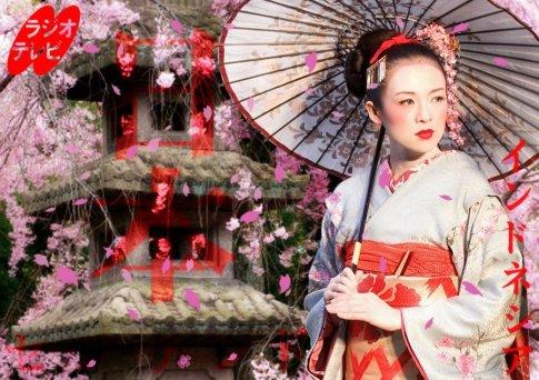 memoirs_of_a_geisha_by_taichotenchi
